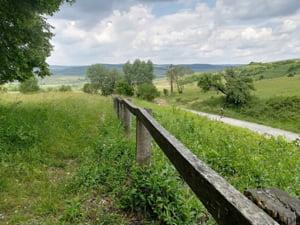 Financial Times: Transilvania e noua Toscana