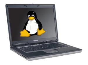 """""""Pinguinul"""" Linux, pe cale de disparitie"""