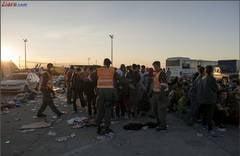 """Criza imigrantilor: """"Atac organizat"""" la Eurotunel - trenurile, suspendate dimineata"""
