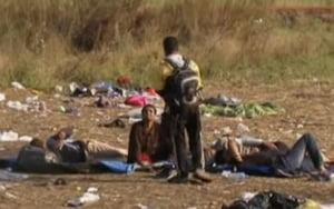 Criza imigrantilor: 50 de autobuze cu 2.500 de persoane au plecat de la Belgrad spre Ungaria