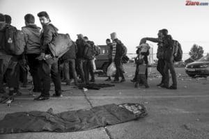 Criza imigrantilor: Ungaria sparge zidurile pentru un culoar de tranzit
