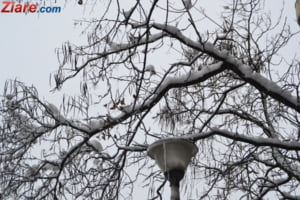 Meteo: Temperaturile mai cresc putin miercuri, dar tot dardaim de frig