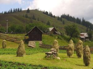 1 Mai in natura: la pescuit in Delta sau drumetii in Bucovina