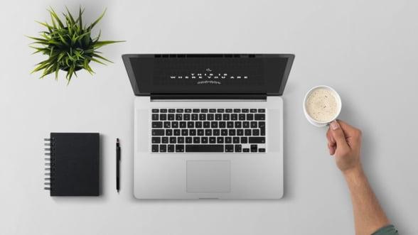 10 idei practice pentru antreprenori, de urmat in munca de acasa