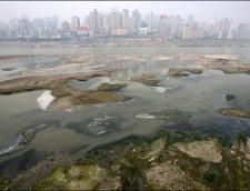 100.000 de locuri de munca, pierdute din cauza poluarii in Golful Mexic