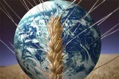 20 de semne ca se apropie o criza a alimentelor