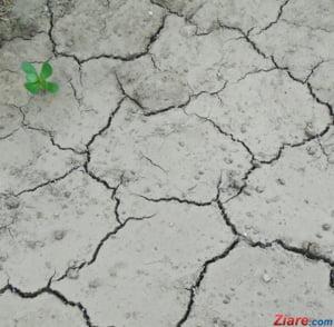 2016 a inregistrat un nou record de caldura pe Terra: E al treilea consecutiv si viitorul nu suna bine
