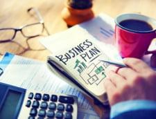 3 idei de afaceri prospere pentru anul 2017. Idei. Strategie