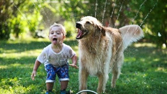 4 motive pentru care sa achizitionezi un animal de companie pentru copii