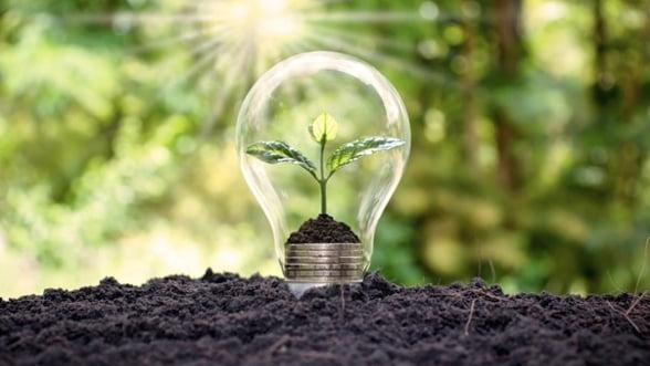 5 modalitati prin care poti proteja mediul inconjurator de acasa