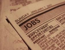 ANOFM: 9.500 de locuri de munca vacante