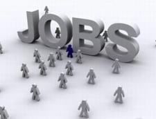 ANOFM: Aproape 10.000 de locuri de munca vacante la nivel national