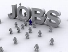 ANOFM: Peste 12.000 de locuri de munca vacante