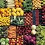 APDRP a selectat 144 proiecte de investitii in procesarea produselor agricole