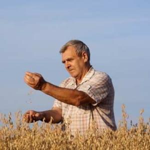 APIA a autorizat la plata, in cadrul SAPS, peste 520.000 fermieri