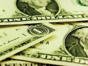 Afacerile Ardaf au crescut pana la 218 milioane lei