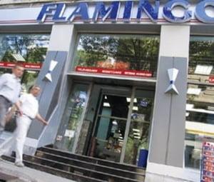 Afacerile Flamingo International au scazut, in S1 2009, cu 50%, la 190 milioane lei