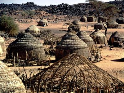 Africa, un continent care exporta materii prime si importa criza