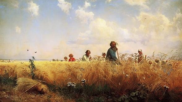Agricultura Rusiei, la pamant. Cum incearca statul s-o ridice