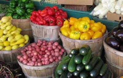 Agricultura si industria alimentara au insumat circa 12% din PIB, anul trecut
