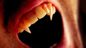 Alin Burcea: Mitul lui Dracula trebuie exploatat. Poate aduce sute de mii de straini in Romania