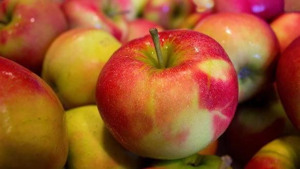 Am cumparat fructe din import de 783,1 milioane euro in 2018 si am exportat de 10 ori mai putin