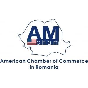 AmCham: Impozitul de 85% afecteaza stabilitatea fiscala asumata de Guvern