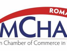 AmCham Romania avertizeaza ca Guvernul a realizat sub 40% din investitiile planificate pentru 2018