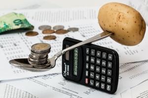 Analisti financiari: Euro va depasi 5 lei in 12 luni