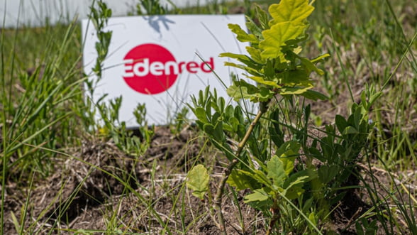Angajatii Edenred isi amplifica actiunile in sprijinul comunitatilor locale, in cadrul evenimentului global Idealday