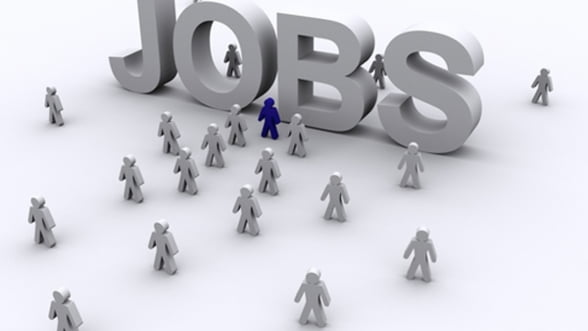 Angajatorii europeni cauta forta de munca. Vezi ce salarii ofera
