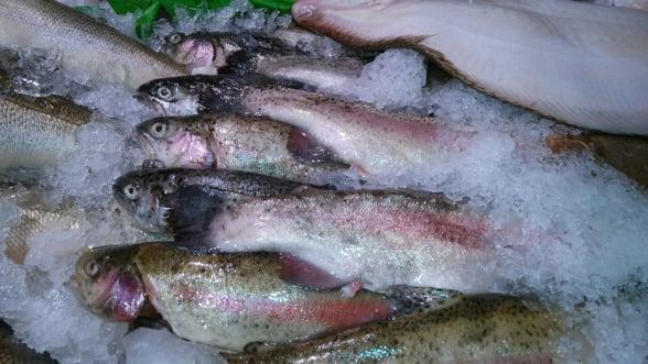Anumite raioane de produse congelate din peste de la Selgros ar putea fi inchise