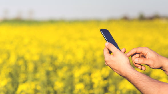 Aplicatii mobile pentru afaceri