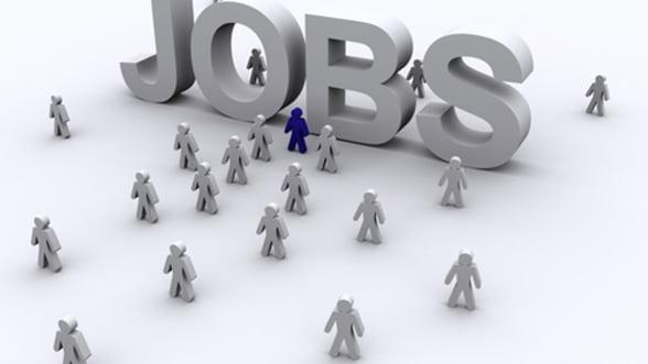Aproape 10.500 de locuri de munca sunt disponibile la nivel national. Vezi domeniile