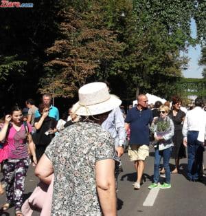 Aproape 20% din populatia Romaniei are peste 65 de ani