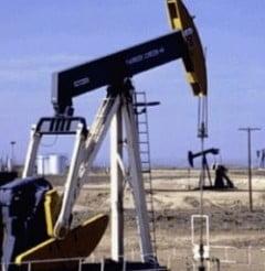 Arabia Saudita va reduce productia de petrol