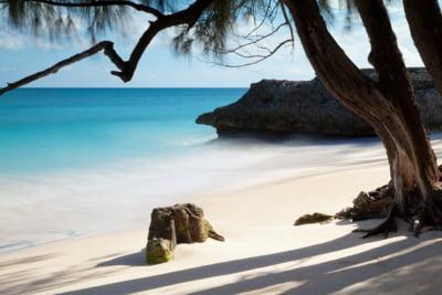 Aruba, Barbados si Bermuda scoase de pe lista neagra a paradisurilor fiscale elaborata de UE