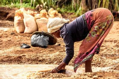 Aur de miliarde de dolari, scos ilegal din Africa de mineri de ocazie