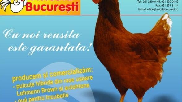 Avicola Bucuresti vrea sa-si majoreze capitalul social cu 20%