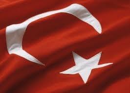 Baconschi vrea un parteneriat strategic Romania-Turcia
