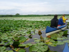Banca Mondiala ne-a facut strategie de dezvoltare economica pentru Delta Dunarii