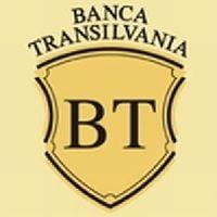 Banca Transilvania, cel mai mare declin al profitului, dintre bancile romanesti