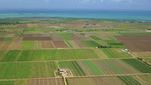 Batalia pentru pamant: O tara din Orientul Mijlociu, interesata sa cumpere 2 milioane de hectare de teren in Romania