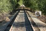 Berceanu vrea sa transfere traficul greu pe calea ferata