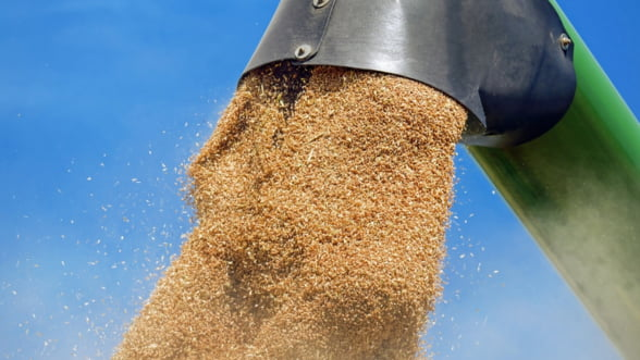 Bloomberg scrie despre gestul Romaniei de a interzice exportul de cereale: Temerile privind aprovizionarea cu alimente sunt in crestere