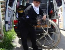Bombe cu ceas in institutiile publice si in propriile case - Marturiile celui care intretine cosurile de fum de la Palatul Victoria