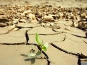 Seceta nu ne-a lasat fara apa sau energie. Prognozele meteo sunt optimiste
