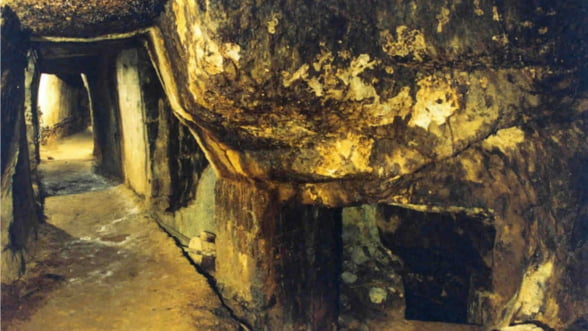 Borbely, dispus sa bea apa de la Rosia Montana