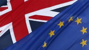Brexit: Tabara pentru ramanerea in UE castiga teren, dupa moartea deputatei Jo Cox