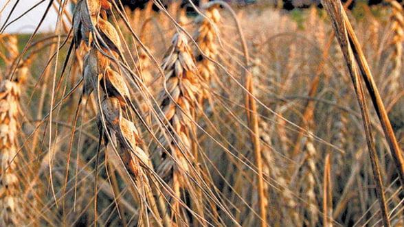 Bugetul Programului de Dezvoltare Rurala va scadea cu aproape un miliard in 2014 - 2020